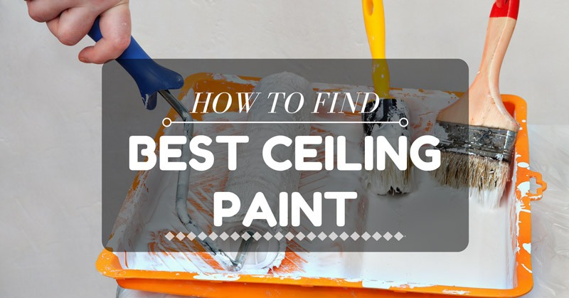 The Best Ceiling Paint Home Design