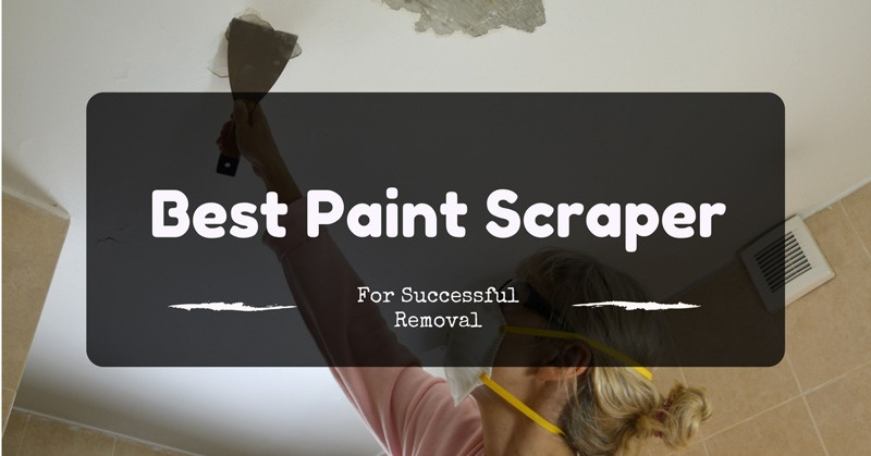 best-paint-scraper