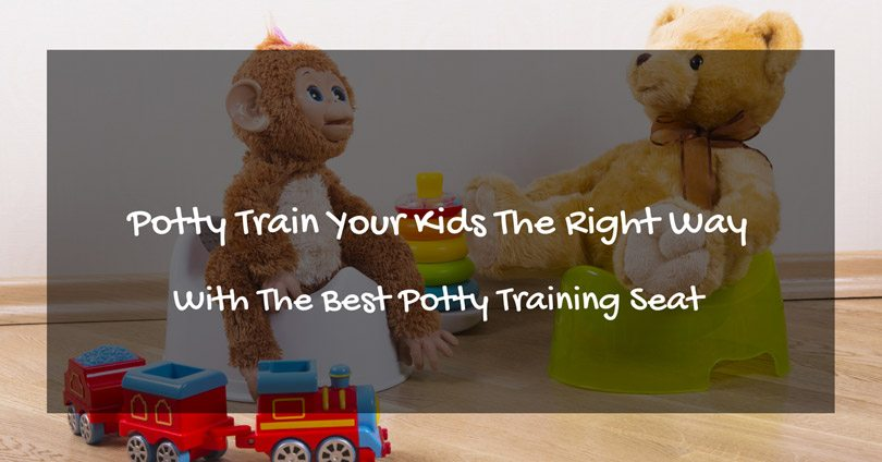best-potty-training-seat